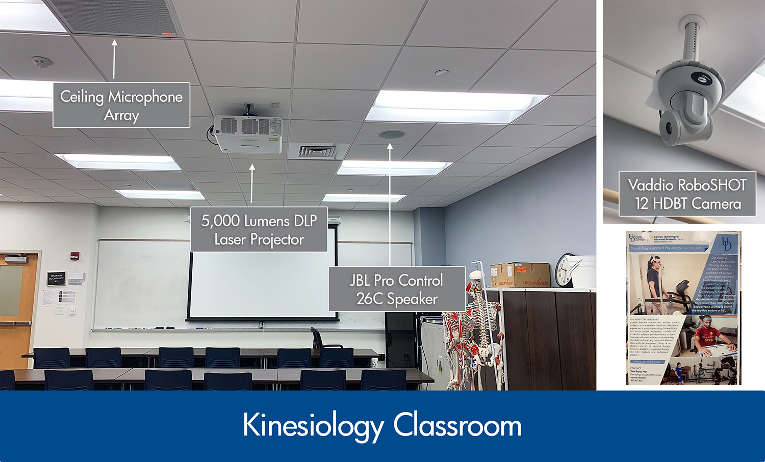 Systems integration in kinesiology classroom