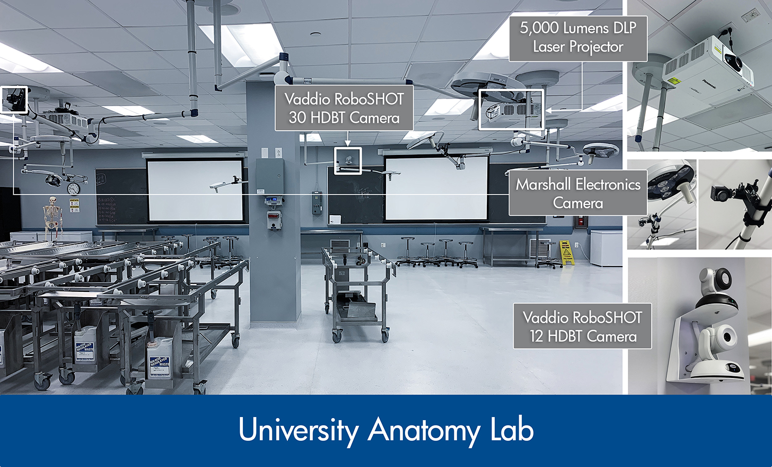 Systems integration in anatomy lab